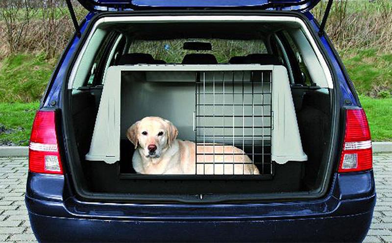 ayudar a las protectoras en los envíos de los animales adoptados